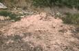 Huyện Chợ Mới, Bắc Kạn: Hàng trăm mét khối chất thải đổ trộm có thể rất độc hại