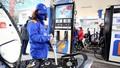 'Bắt mạch' giá xăng dầu năm 2019