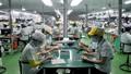 Lao động Việt Nam cư trú bất hợp pháp tại Đài Loan: Tự nguyện về nước sẽ được miễn giảm giam giữ, tiền phạt