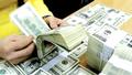 Bắt đầu lộ trình hạn chế tín dụng ngoại tệ