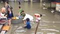 Vì sao tiểu thương chợ Vinh thiệt hại tiền tỷ ?
