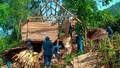 Lốc xoáy 15 phút tốc mái 250 ngôi nhà ở Nghệ An
