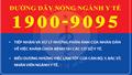 Đường dây nóng của Bộ Y tế tiếp nhận gần 66.000 cuộc gọi