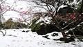 Ngắm miền Bắc ngập chìm trong mưa, tuyết