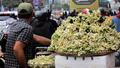 Nao lòng những gánh hoa bưởi mang hồn quê ra Hà Nội