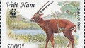 Bất ngờ xuất hiện động vật vô cùng quý hiếm nguy cơ tuyệt chủng