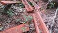Dựng lại hiện trường vụ phá rừng gỗ mun trong Vườn di sản Phong Nha