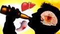 'Khám phá' hành trình... tàn phá cơ thể người của rượu
