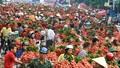 2 tháng, vải thiều đem về 6.300 tỷ cho Bắc Giang