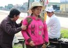 Tiếp vụ người phụ nữ ôm bảng kêu oan tại QL1: 6 năm 4 bản án