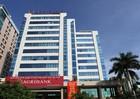 Agribank đứng đầu trong hệ thống ngân hàng đạt Top 10 VNR500 năm 2018
