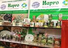 Hapro đạt danh hiệu doanh nghiệp xuất khẩu  uy tín năm 2017