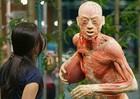 """Nhựa hóa cơ thể người: """"Phát minh"""" vĩ đại, hay vô nhân đạo?"""