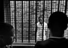 """""""Bố già"""" hắc ám ngồi trong trại giam vẫn khiến hàng loạt """"quý bà"""" sa bẫy"""