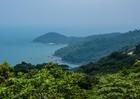 Công bố quyết định thanh tra toàn diện dự án tại bán đảo Sơn Trà và khu Đa Phước