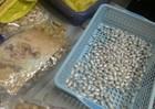 Bắt đối tượng mang 2 quốc tịch, đưa ma túy về Việt Nam tiêu thụ
