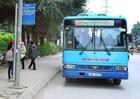 Nâng cao chất lượng xe buýt ngoại thành Hà Nội