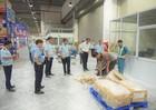 Hải quan thu giữ gần 1 tấn ngà voi, vảy tê tê vận chuyển qua đường hàng không