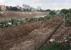 Lợi dụng Dự án thanh thải phế thải bờ kênh Bắc Hưng Hải để khai thác 'đất màu' trái phép?