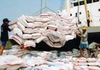Tín hiệu mừng cho các nhà xuất khẩu gạo Việt Nam
