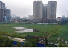 Dự án công viên hồ điều hòa nghìn tỷ thành ao bèo khổng lồ