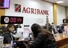 """Agribank: Gian nan xử lý nợ xấu với áp lực trong vai trò """"bà đỡ"""""""