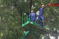 Từ nay, Hà Nội vắng bóng hơn 1000 cây xanh trên đường Phạm Văn Đồng