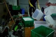 Rùng mình công nghệ rửa bát, đĩa siêu bẩn bức tử Sông Nhuệ