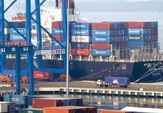 Chính phủ yêu cầu kiểm điểm lại trách nhiệm người đứng đầu trong vụ 213 container mất tích
