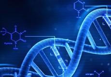 Thủ tục giám định ADN hài cốt liệt sĩ