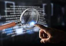 Chính sách của nhà nước trong Luật An ninh mạng được quy định như thế nào?