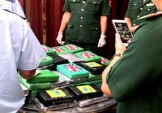Khởi tố vụ án 100 bánh cocaine trên container phế liệu