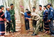 Xây dựng 'thế trận lòng dân' ở Binh đoàn 15