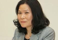 Đại sứ Việt Nam chủ trì cuộc họp của Ủy ban ASEAN tại La Hay