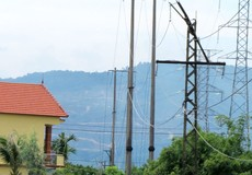Quảng Bình: Người dân nơm nớp sợ đường điện đổ đè lên nhà khi mưa bão