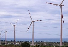 Tăng giá mua điện gió
