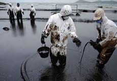Có nên công khai kế hoạch khắc phục sự cố tràn dầu để cộng đồng giám sát thực hiện?
