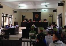'Bảo kê' cho lái xe, 'sếp' và nhân viên cùng hầu tòa