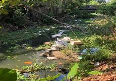 """Thừa Thiên - Huế: Chính quyền địa phương """"bất lực"""" nhìn sông ô nhiễm"""