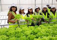 """Tìm ưu thế cạnh tranh cho giải pháp Nông nghiệp thông minh """"nội"""""""