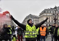 Số lượng người biểu tình ở Pháp giảm mạnh