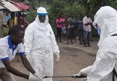 Không loại trừ trường hợp bệnh Ebola từ vùng có dịch vào Việt Nam