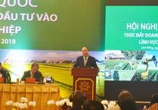 Thủ tướng kêu gọi doanh nhân Việt 'bắt tay' đưa nông sản ra thị trường quốc tế