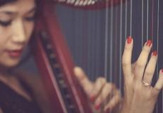 """""""Thánh địa"""" của giới chơi hạc cầm"""
