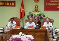 Yêu cầu tỉnh Đắk Lắk chấp hành nghiêm việc đóng cửa rừng