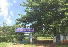 Tiếp vụ bê bối xung quanh nghĩa trang liệt sỹ tạm ở Đồng Nai: 'Cuộc chiến' 26 năm âm thầm trên mảnh đất đau thương