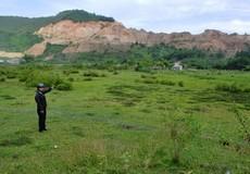 Nông dân Hòa Vang khốn đốn vì hàng chục hécta đất nông nghiệp hoang hóa