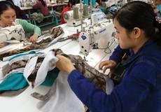 TP Hồ Chí Minh: Gần 700.000 người lao động không có bảo hiểm xã hội