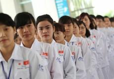 Lao động Việt Nam 'rộng cửa' làm việc tại thị trường Nhật Bản