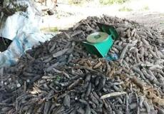 Khởi tố vụ người phụ nữ tử vong khi làm việc với đoàn kiểm tra liên ngành ở Tây Ninh